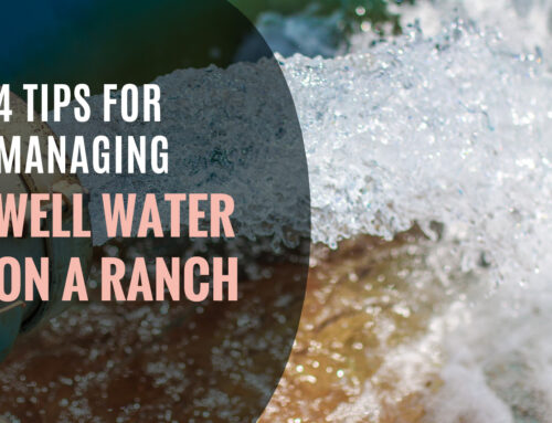 4 Tips for Managing Well Water on a Ranch
